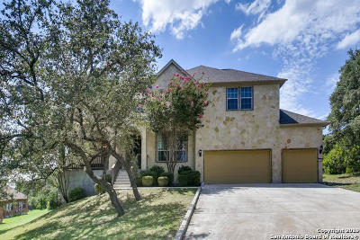 Helotes Single Family Home For Sale: 10911 Iron Spring