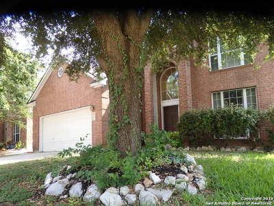 Schertz Single Family Home New: 4521 Union Creek Dr