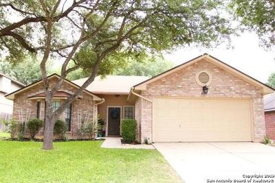 Guadalupe County Single Family Home New: 2732 Star Light Ln