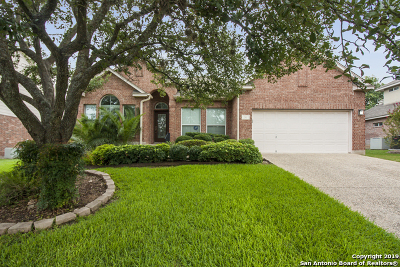 Stone Oak Single Family Home For Sale: 511 Ken Dr