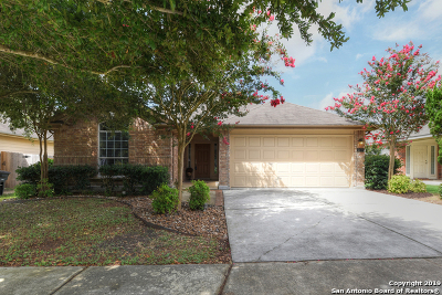 New Braunfels Single Family Home New: 2678 Dove Crossing Dr