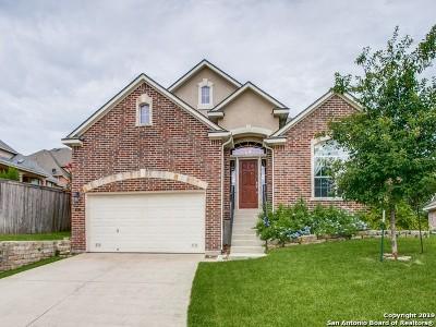 San Antonio TX Single Family Home Active Option: $335,000