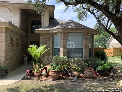 New Braunfels Single Family Home New: 3128 San Miguel