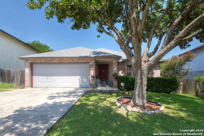 Converse Single Family Home New: 8255 Brisbane