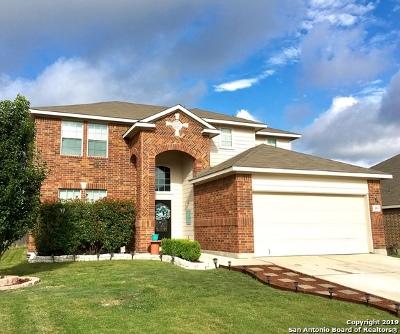 New Braunfels Single Family Home New: 355 Cylamen