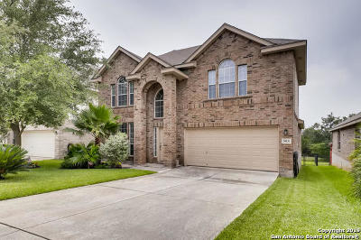 Stone Oak Single Family Home Active Option: 20531 Cliff Park