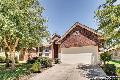 Schertz, Cibolo Single Family Home New: 244 Gardner Cove