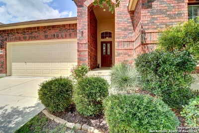 Alamo Ranch Single Family Home For Sale: 4806 Barboli