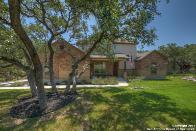 New Braunfels Single Family Home Active Option: 198 Winding View
