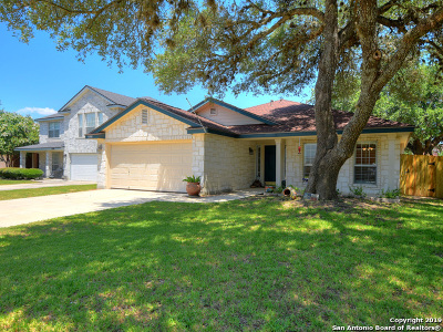 Helotes Single Family Home New: 11302 Mentmore