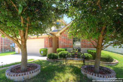 Cibolo Single Family Home New: 233 Mountain Home