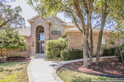 San Antonio Single Family Home New: 47 Silverhorn Dr
