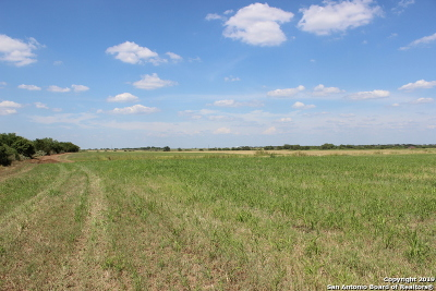 Atascosa County Residential Lots & Land For Sale: 11 Acre County Road 101