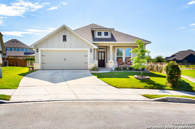 Schertz, Cibolo Single Family Home New: 11814 Hopes Hollow