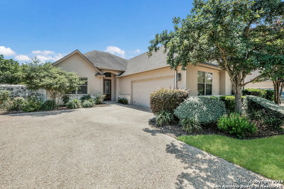 Stone Oak Single Family Home For Sale: 210 Garden Hill