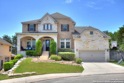 San Antonio Single Family Home New: 3110 Apache Plume