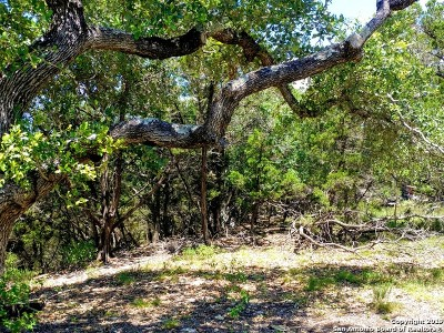 Canyon Lake Residential Lots & Land New: 535 Twilight Dr
