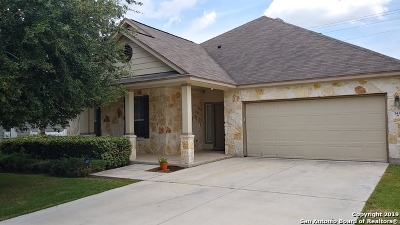 Cibolo Single Family Home New: 143 Brook Meadows