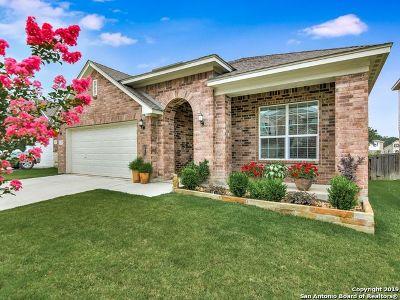 San Antonio Single Family Home For Sale: 8171 Two Falls