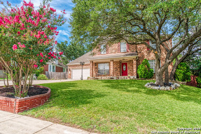 Stone Oak Single Family Home New: 24830 Twin Arrows