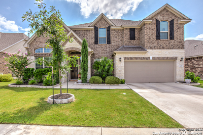 Kendall County Single Family Home New: 205 Woods Of Boerne Blvd