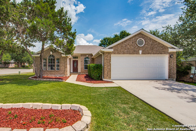 Schertz Single Family Home Active Option: 1128 Sandy Ridge Circle