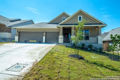 New Braunfels Single Family Home New: 3607 High Cloud Drive