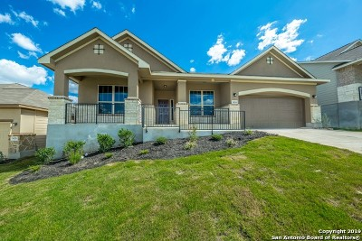 New Braunfels Single Family Home New: 3624 Blue Cloud Drive