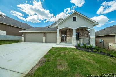 New Braunfels Single Family Home New: 3603 High Cloud Drive