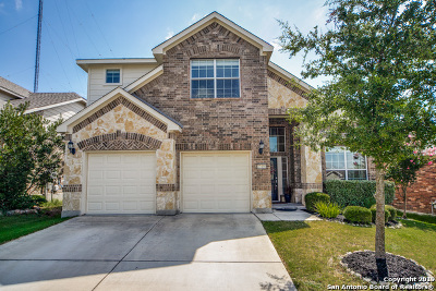 Boerne Single Family Home New: 27450 Camino Tower