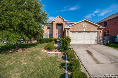 Cibolo Single Family Home New: 101 Springtree Cove