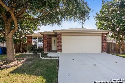 New Braunfels Single Family Home New: 348 Starling Creek