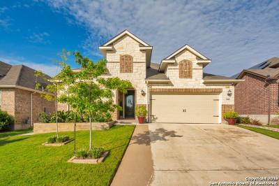 San Antonio Single Family Home New: 1802 Cedric Ln