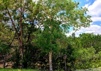 Canyon Lake Residential Lots & Land New: 1249 Mountain View Dr