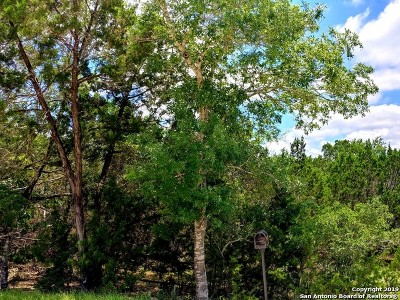 Canyon Lake Residential Lots & Land New: 1237 Mountain View Dr