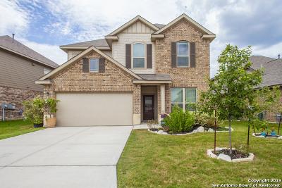 San Antonio Single Family Home New: 13829 Cohan Way