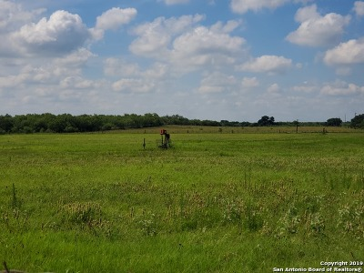 Atascosa County Residential Lots & Land For Sale: Winans Rd