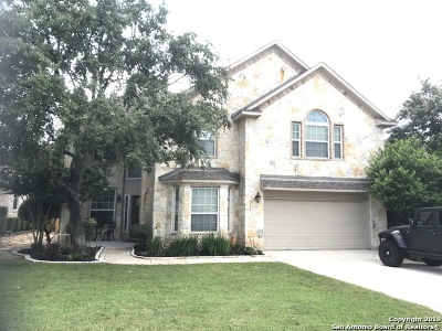 San Antonio Single Family Home New: 25226 Four Iron Ct