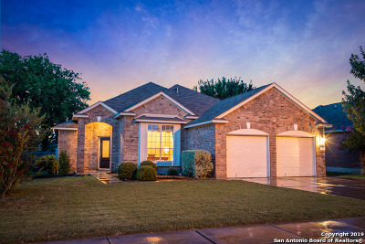 New Braunfels Single Family Home New: 2043 Belvedere Ct