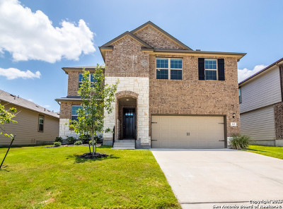 Cibolo Single Family Home New: 217 Prairie Vista