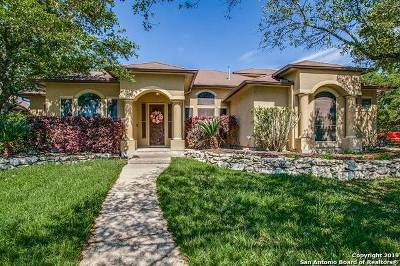 Stone Oak Single Family Home New: 863 Fawnway