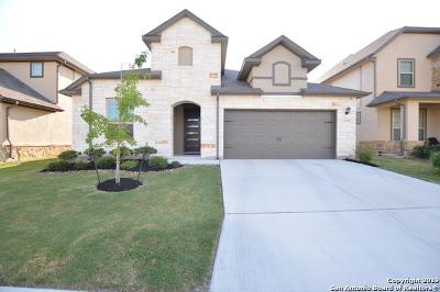 San Antonio TX Single Family Home New: $345,900