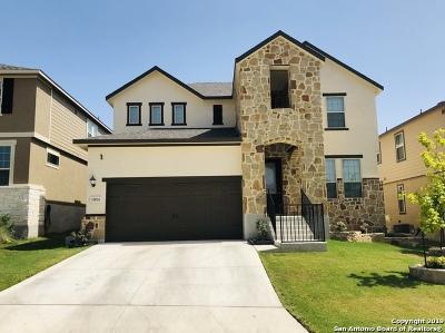 San Antonio TX Single Family Home New: $340,000