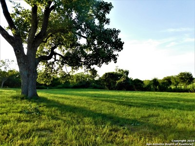 Wilson County Residential Lots & Land New: 806 11th St