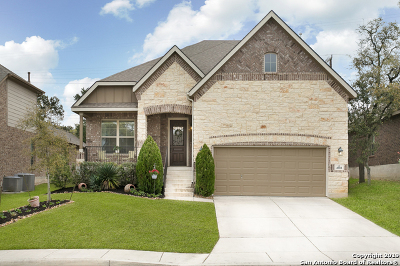 San Antonio Single Family Home New: 4918 Segovia Way