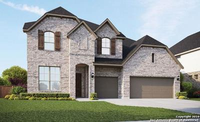 New Braunfels Single Family Home New: 1141 Carriage Loop