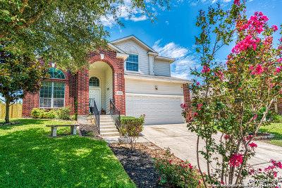 San Antonio Single Family Home New: 10035 Collenback Run