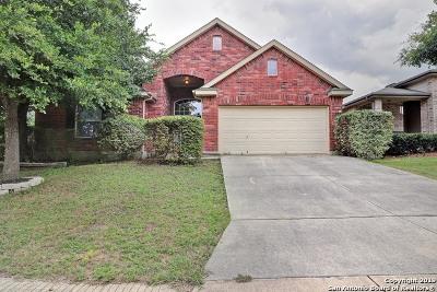 San Antonio Single Family Home New: 11602 Huisache Daisy