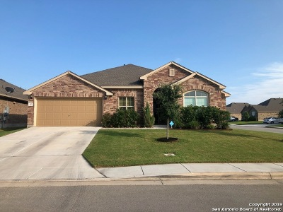 New Braunfels Single Family Home New: 615 Ridgebranch Dr