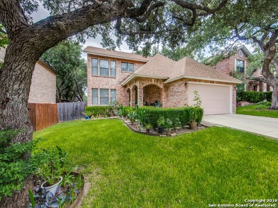 San Antonio Single Family Home New: 9619 Wicklow Dr